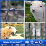 家畜はフィールド塀または金属の牛塀の農場の囲を結ぶ