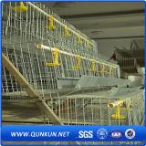 Sistema caldo della gabbia del pollo di vendita