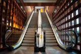 Escada rolante do preço de Fujizy com alta qualidade