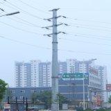 Riga ambientale Palo d'acciaio elettrico