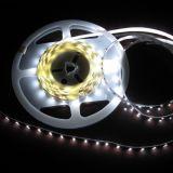 Aprobación del CE de la iluminación de tira de 5050 LED