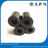 モーター磁石の常置亜鉄酸塩のMultipoleリング