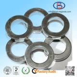 Countersink Magneet de van uitstekende kwaliteit van het Neodymium van de Vorm van de Ring