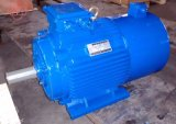 1HP-270HP Tefc (IP54) Inverter Duty Electric Motor