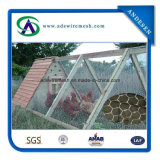 Bwg24 * 1 / 2''pvc Coated Hexagonal Wire Netting Mesh Mesh