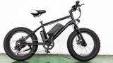20inch vélo électrique de grosse puissance du pneu 500W grande
