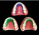 Orthodontisches zahnmedizinisches Vakuum, das Blatt bildet