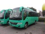 Autobús escolar Medium Passenger Car de China los 7.5m con 31-35 Seats