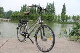 Garantía eléctrica certificada En15194 de poco ruido estupenda de Ebicycle de la ciudad de la bici del Ce de la onda de seno M900 2 años