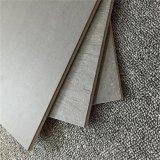 Doppie mattonelle del pavimento e della parete della porcellana di caricamento (600X600)