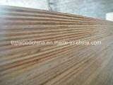 Madeira compensada do núcleo da alta qualidade 18mm Combi para a mobília