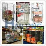 Frame Wire Galvanized Roll Mesh Containerに入り込むこと