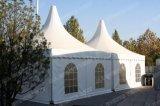 حارّ عمليّة بيع [بغدا] خيمة/حزب خيمة/[بغدا] حزب خيمة