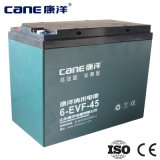 12V 45ah Leading cinese Manufacturer del AGM Battery