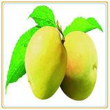 Le pere inscatolate Expectoranting di disintossicazione/possono alimento