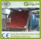 Máquina de secagem contínua de cinto de vegetais de frutas