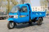 Waw fechou o triciclo 3-Wheel motorizado Diesel da carga de China