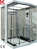ガラス車の壁が付いているパノラマ式のエレベーター