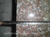 Graniet G87