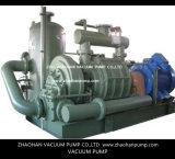 AT706 발전소를 위한 2단계 진공 펌프
