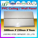 panneau de mur léger de panneau de PVC de décoration de configuration de fibre de bois de cendre de 7*250mm