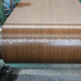 Il colore di legno del grano ha rifinito le bobine d'acciaio galvanizzate della bobina/PPGI