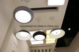 20W에서 가구 점화를 위한 60W에 LED 천장 빛 힘의 몇몇 시리즈