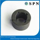 Magnete sinterizzato permanente del ferrito per il rotore