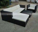 Muebles al aire libre de la rota de Kd del salón del jardín determinado seccional de mimbre del sofá (MTC-283)