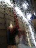 Heißes Dipped Galvanized Steel Coil für Construction Gi
