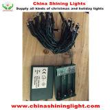 暖かく白い緑ワイヤー4m LED電池ライト