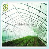 Multi Überspannungs-Klima-Steuergrünes Haus für Erdbeere