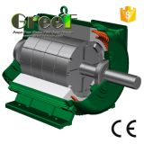 AC Brushless Fase 3 20kw 100rpm Permanente Synchrone Generator van de Magneet