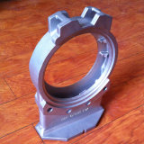 OEMの鋳鉄のバルブ本体の部品