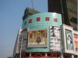 Afficheur LED de centre commercial d'intense luminosité de projet de gouvernement de Skymax