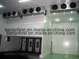Dispositivo di raffreddamento di aria evaporativo fissato al muro poco costoso