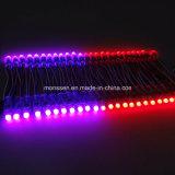 밝은 3528SMD 12V IP67 주황색 유연한 LED 지구
