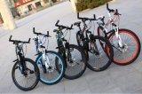 2017大人のための新式の山の自転車