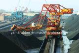 Förderwerk Belt/Fabric Conveyor Belt mit Excellent Impact Durability