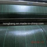 الصين مصنع [أوف] يعامل أسود [بّ] يحاك [ويد] حصير