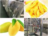 De aseptische Lijn van de Verwerking van de Pulp van de Mango van het Pakket