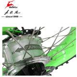 Снежок Ebike самого последнего тарельчатого тормоза зеленого цвета 36V 13.5ah складывая (JSL039K-6)