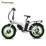 남자를 위한 전기 자전거를 접히는 두 배 모터 고성능