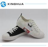 Chaussures de toile d'étoiles pour le fournisseur