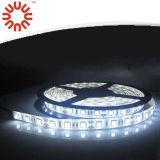 Novo SMD3528 SMD2835 SMD5050 SMD5630 tira impermeável LED