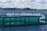 jaulas flotantes de los pescados del tubo del HDPE de 250m m