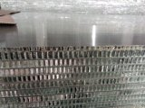 ألومنيوم قرص عسل لوح لأنّ جدار واجهة