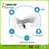 Stringa che illumina l'indicatore luminoso stellato leggiadramente caldo impermeabile del USB LED di bianco