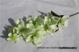 Beste verkaufenqualitäts-Silk gefälschte Blumen-künstliche Motten-Orchidee-Basisrecheneinheits-Orchidee für Hauptdekoration