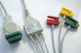 Câble vert de GE-Marquette 11pin Snap&Clip 3 ECG